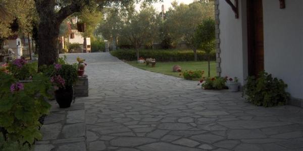 Vatzola's Studios